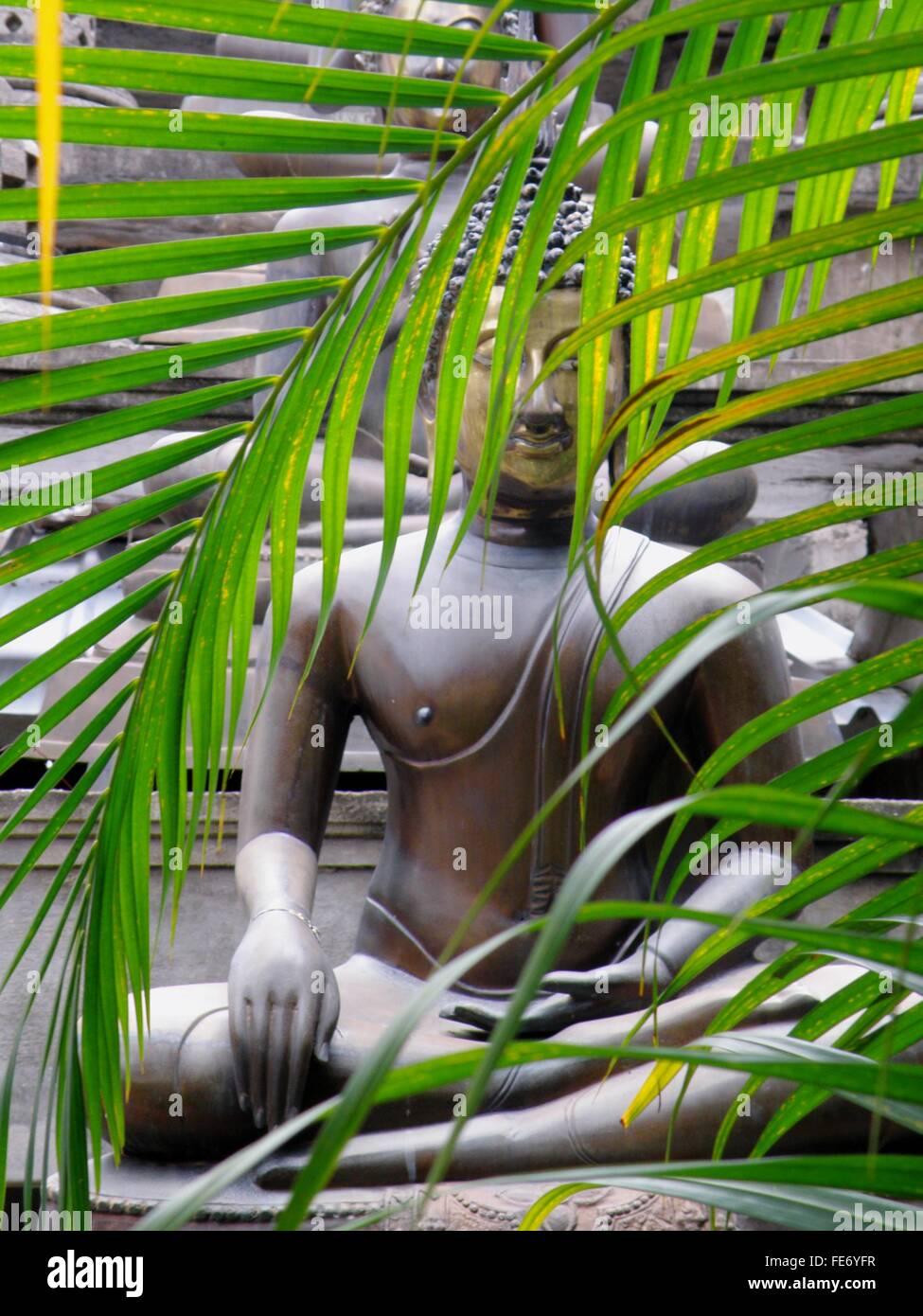 Di foglie di palma che blocca la visualizzazione di statue di Buddha Immagini Stock