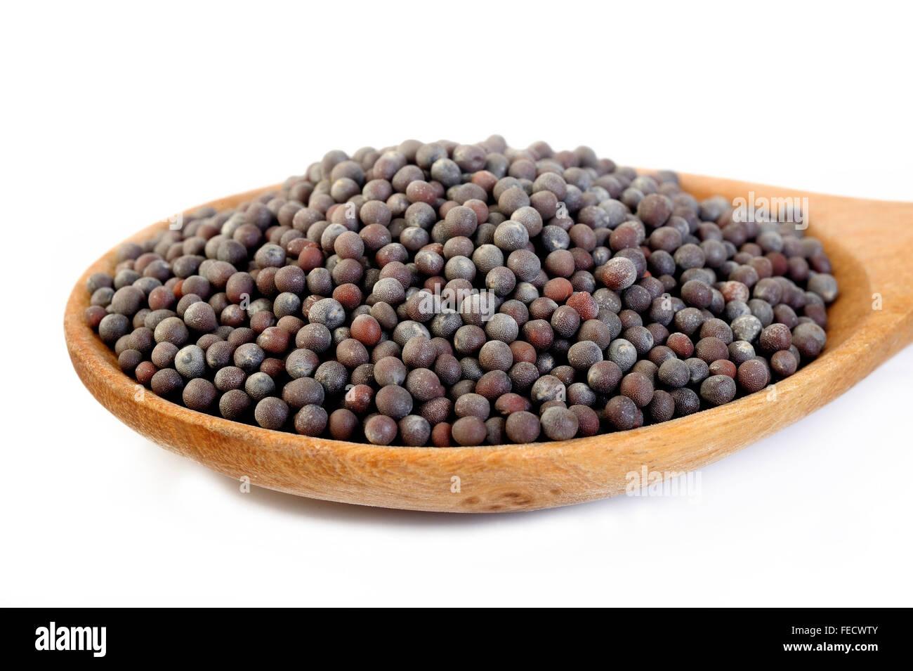 Nero semi di senape in cucchiaio di legno Foto Stock