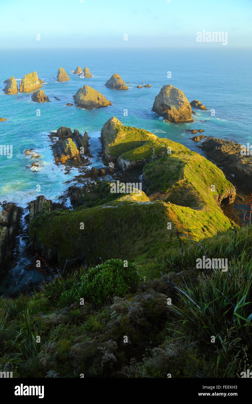 """Alcuni dei numerosi """"pillole"""" al Nugget Point Lighthouse sul Catlins costa della Nuova Zelanda. Immagini Stock"""