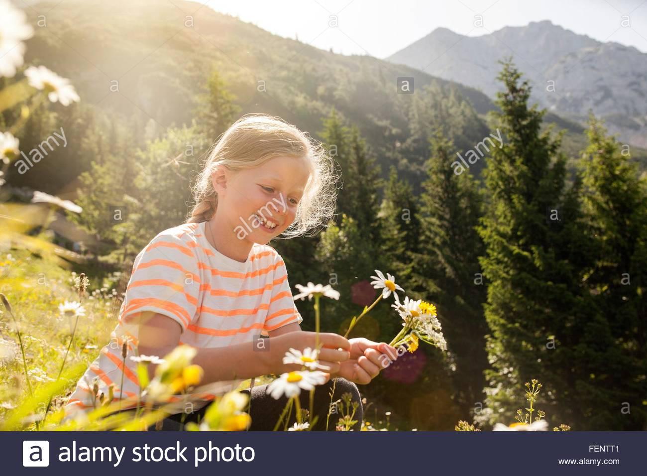 Ragazza giovane in campo, fiori di prelievo Immagini Stock