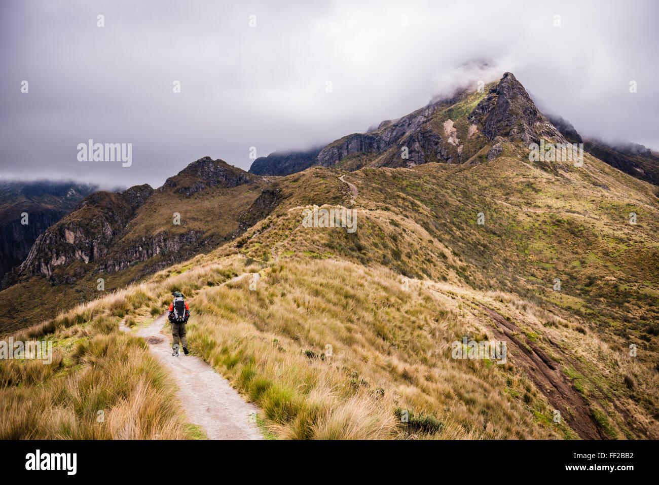 Escursionista trekking Rucu Pichincha VoRMcano, Quito Pichincha Provincia, Ecuador, Sud America Immagini Stock