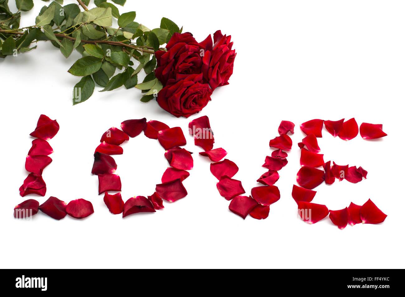 Bouquet di rose e iscrizione amore dai petali Immagini Stock