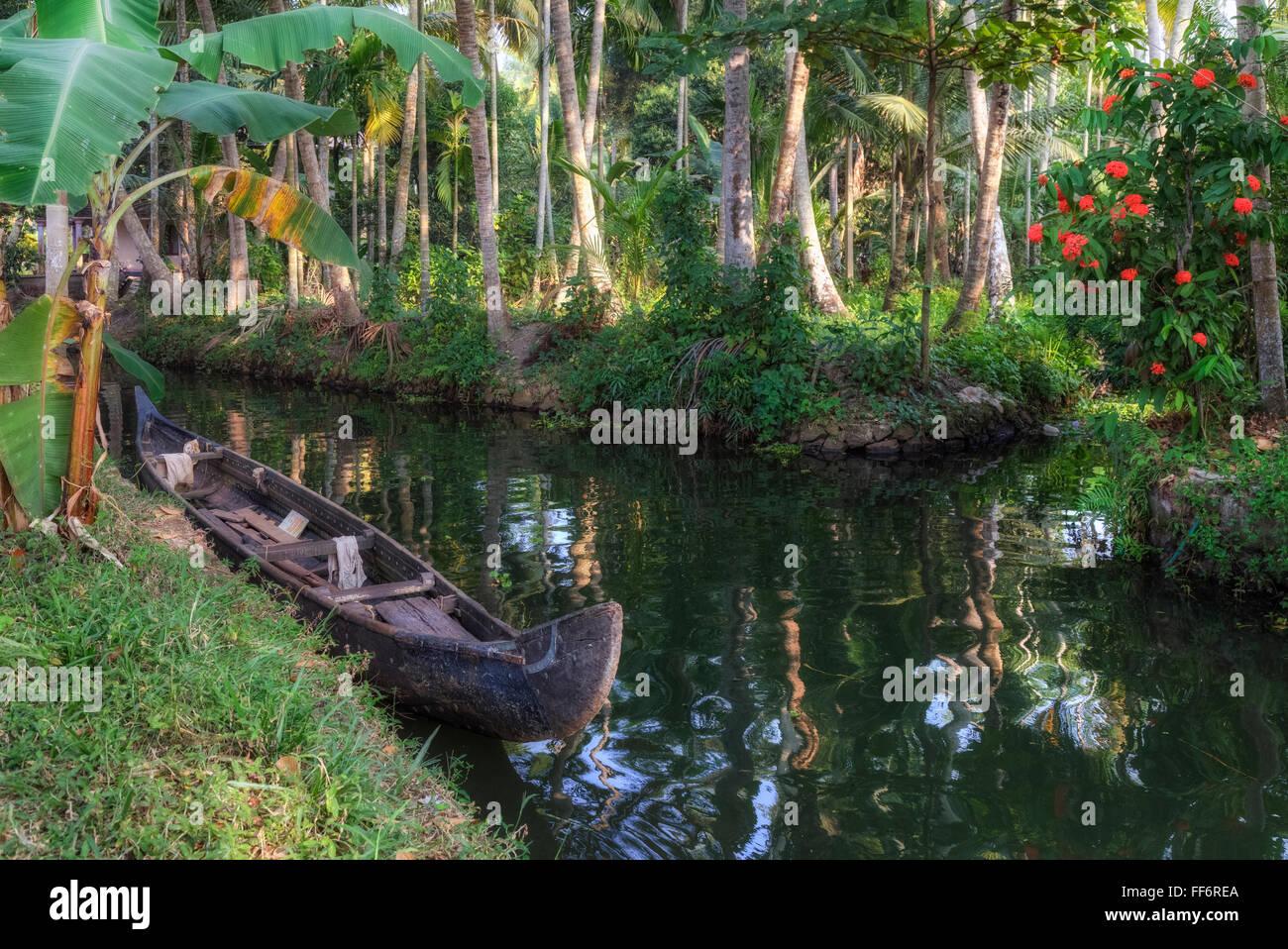Alappuzha, lagune, Kerala, India del Sud, Asia Immagini Stock