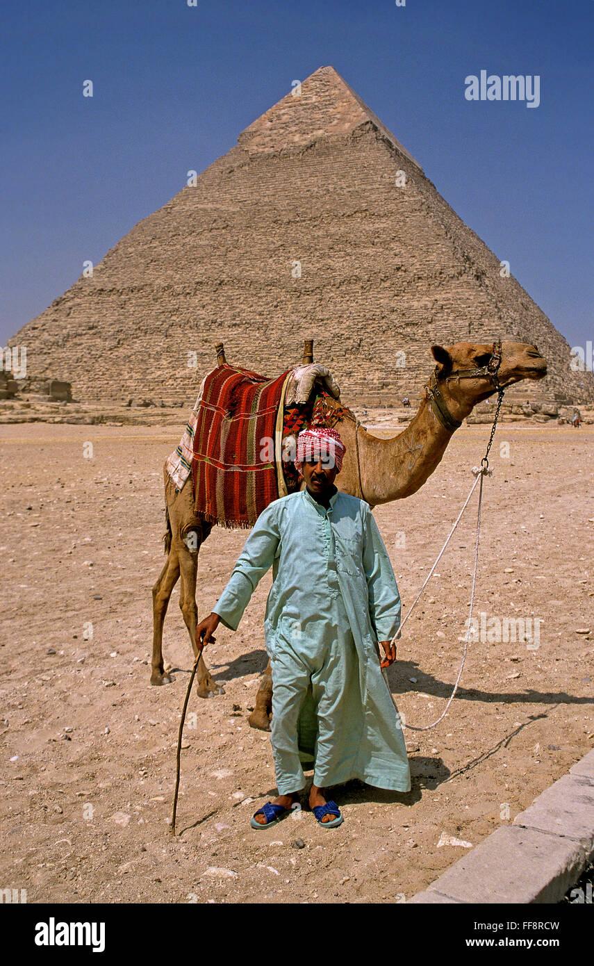 Driver del cammello e la piramide di Khafre, Giza, Cairo, Egitto, Africa Immagini Stock