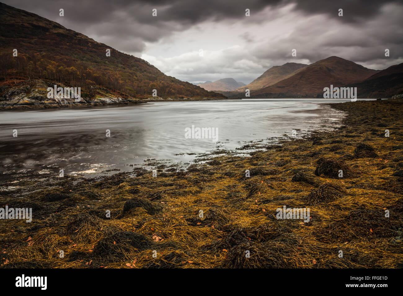 Loch Creran nelle Highlands scozzesi, catturato ai primi di novembre da vicino il ponte stradale sulla A828 Loch Immagini Stock