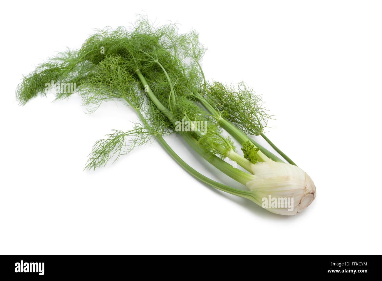Finocchio fresco lampadina con foglie verdi su sfondo bianco Immagini Stock