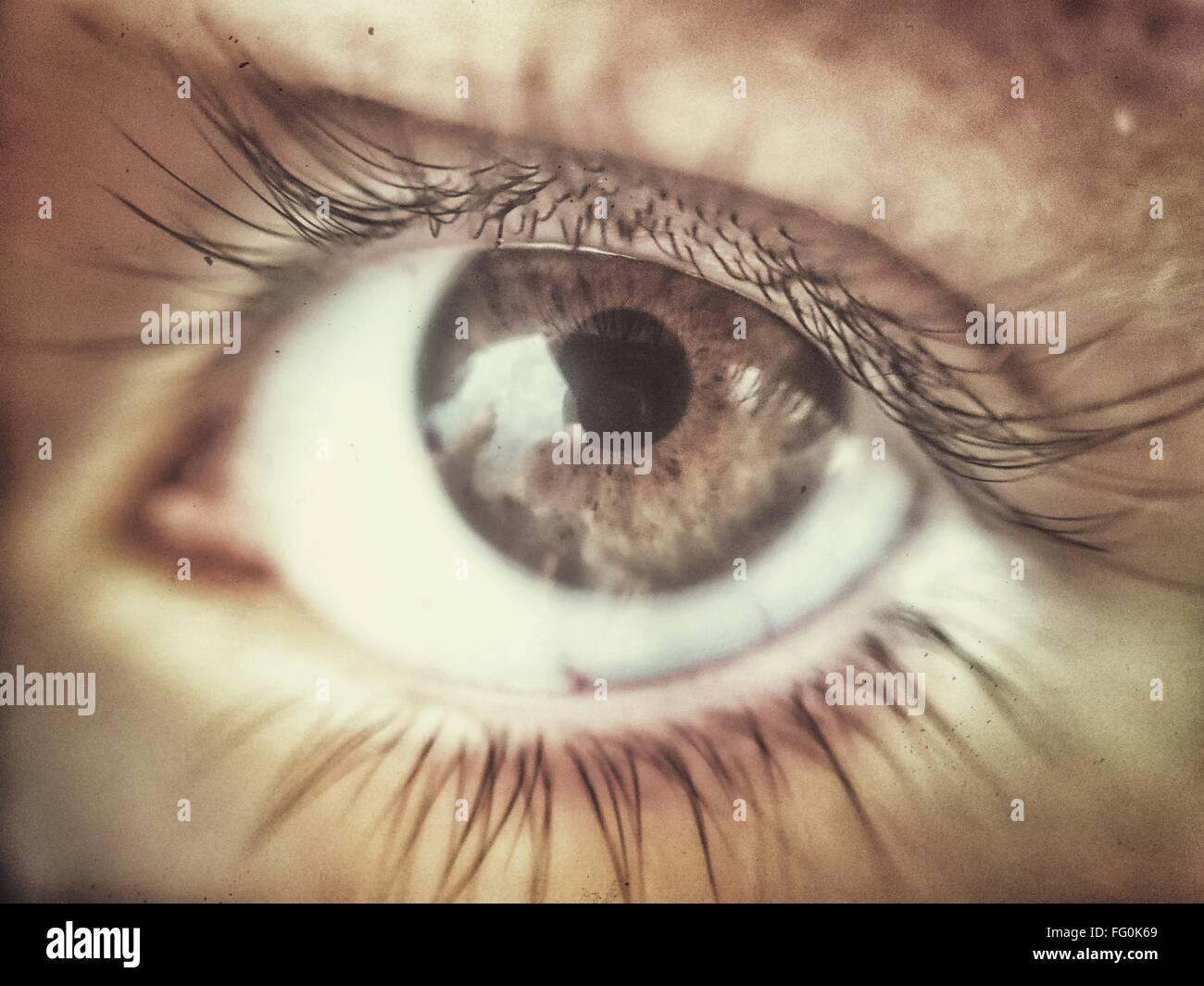 Extreme Close-Up dell occhio umano Immagini Stock