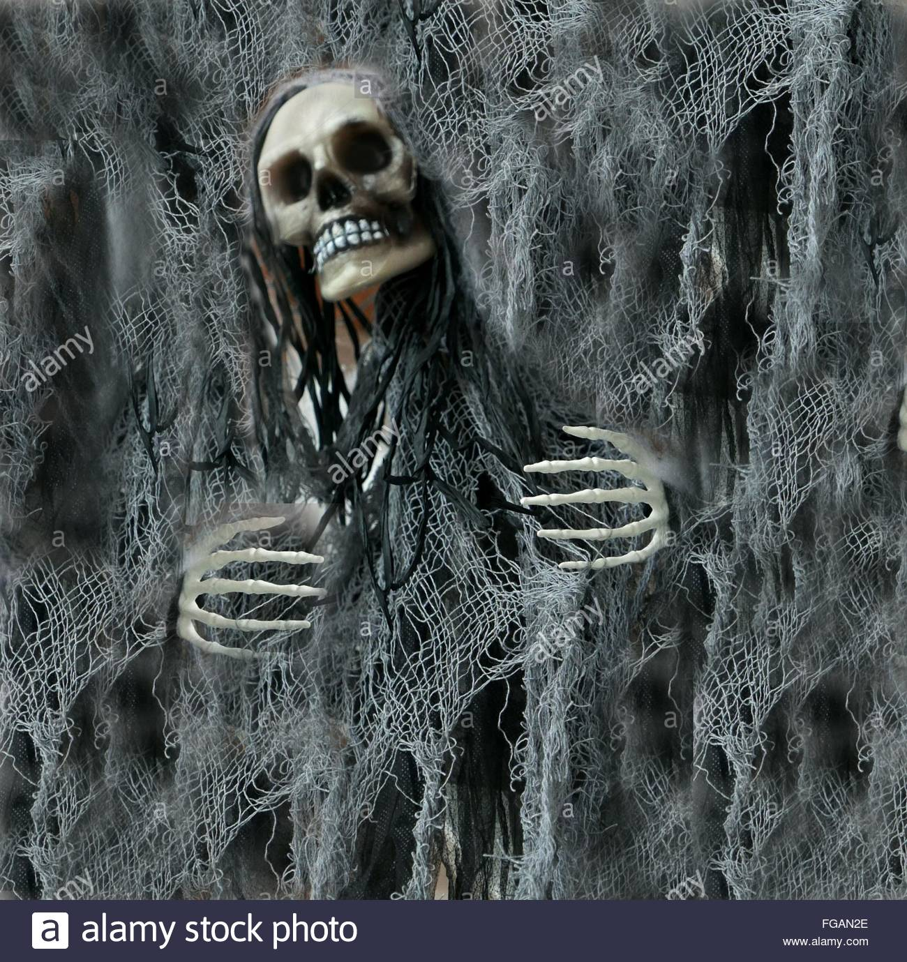 Digital immagine composita del cranio umano e Net Immagini Stock