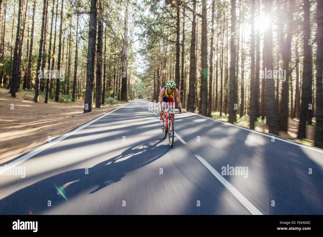 Un ciclista scorre la sua bici su strada attraverso una profonda foresta di alberi di pino Immagini Stock