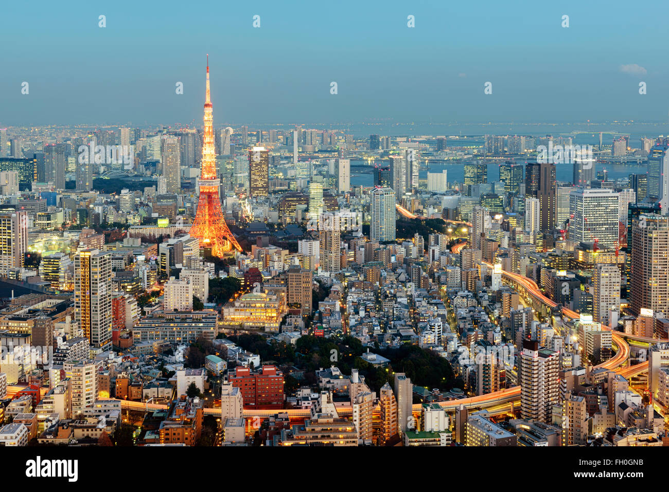 Tokyo, Giappone - 14 gennaio; 2016: vista notturna di Tokyo con la mitica Torre di Tokyo in background. Immagini Stock