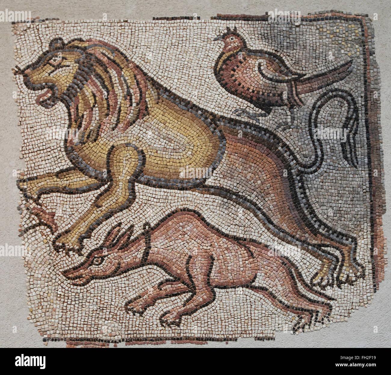 Mediterraneo orientale mosaici romani di animali, v - VI secolo a. Tre animali sono in gara, un cane, un leone e Immagini Stock