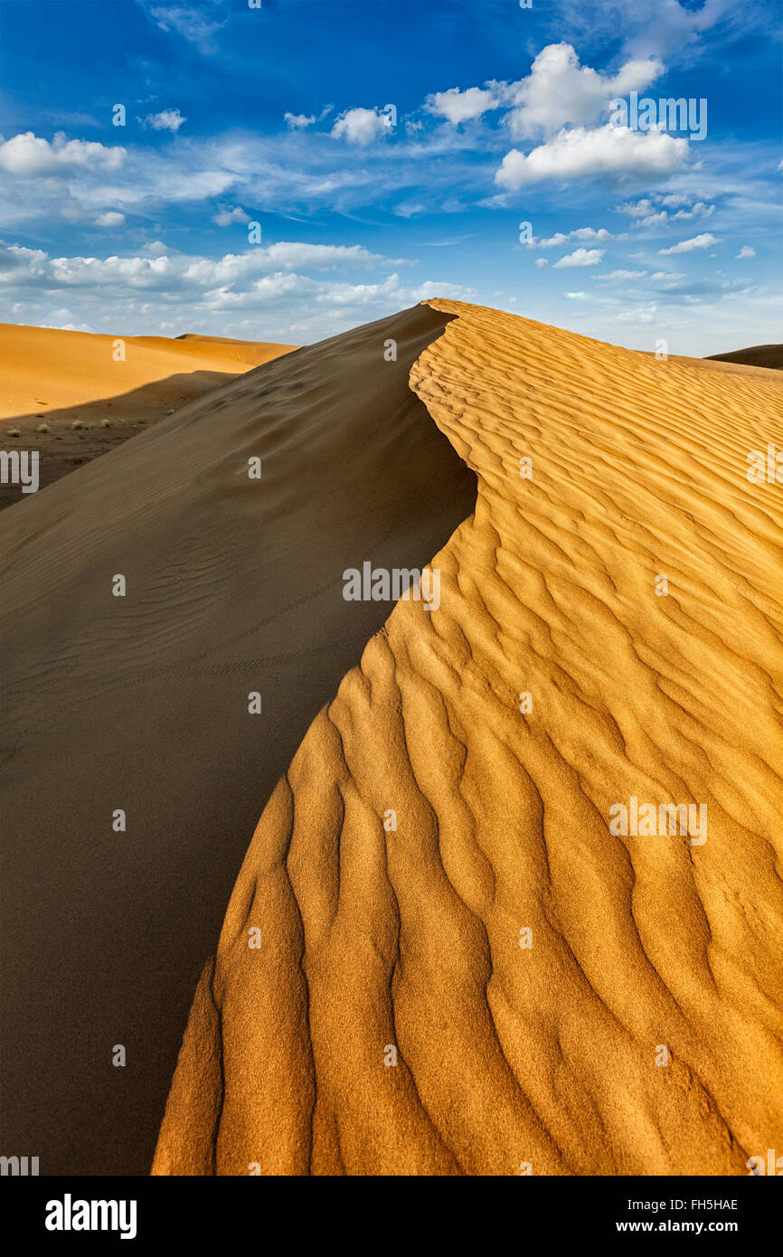 Dune nel deserto di Thar Immagini Stock