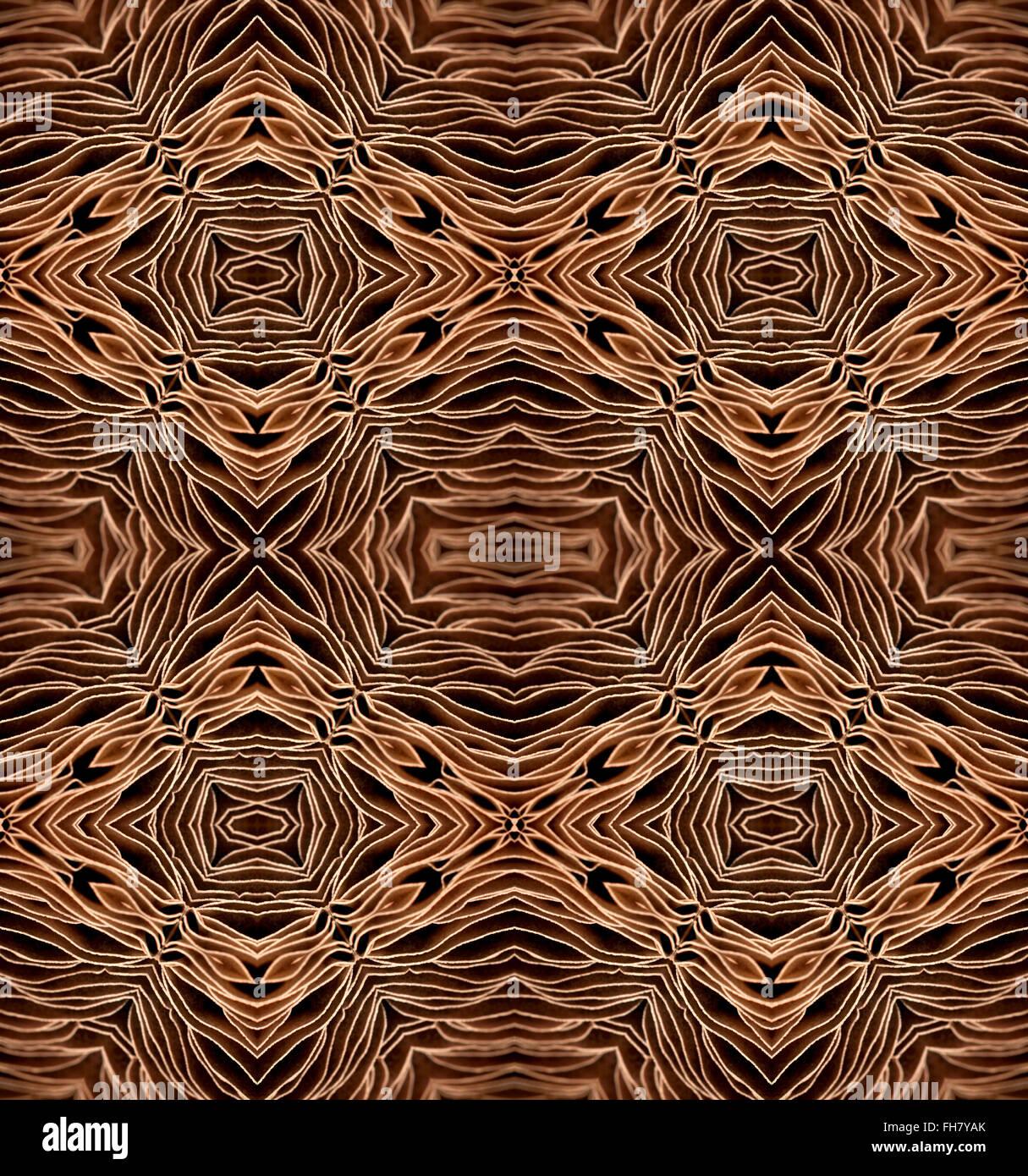 Schema ripetuto del lato inferiore del campo di grandi dimensioni che mostra del fungo branchie - disegno astratto Foto Stock