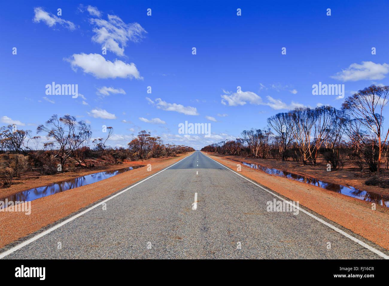 Larghezza del vuoto strada sigillato in Western Australia dopo grave bushfires distruggendo gumtree boschi intorno Immagini Stock