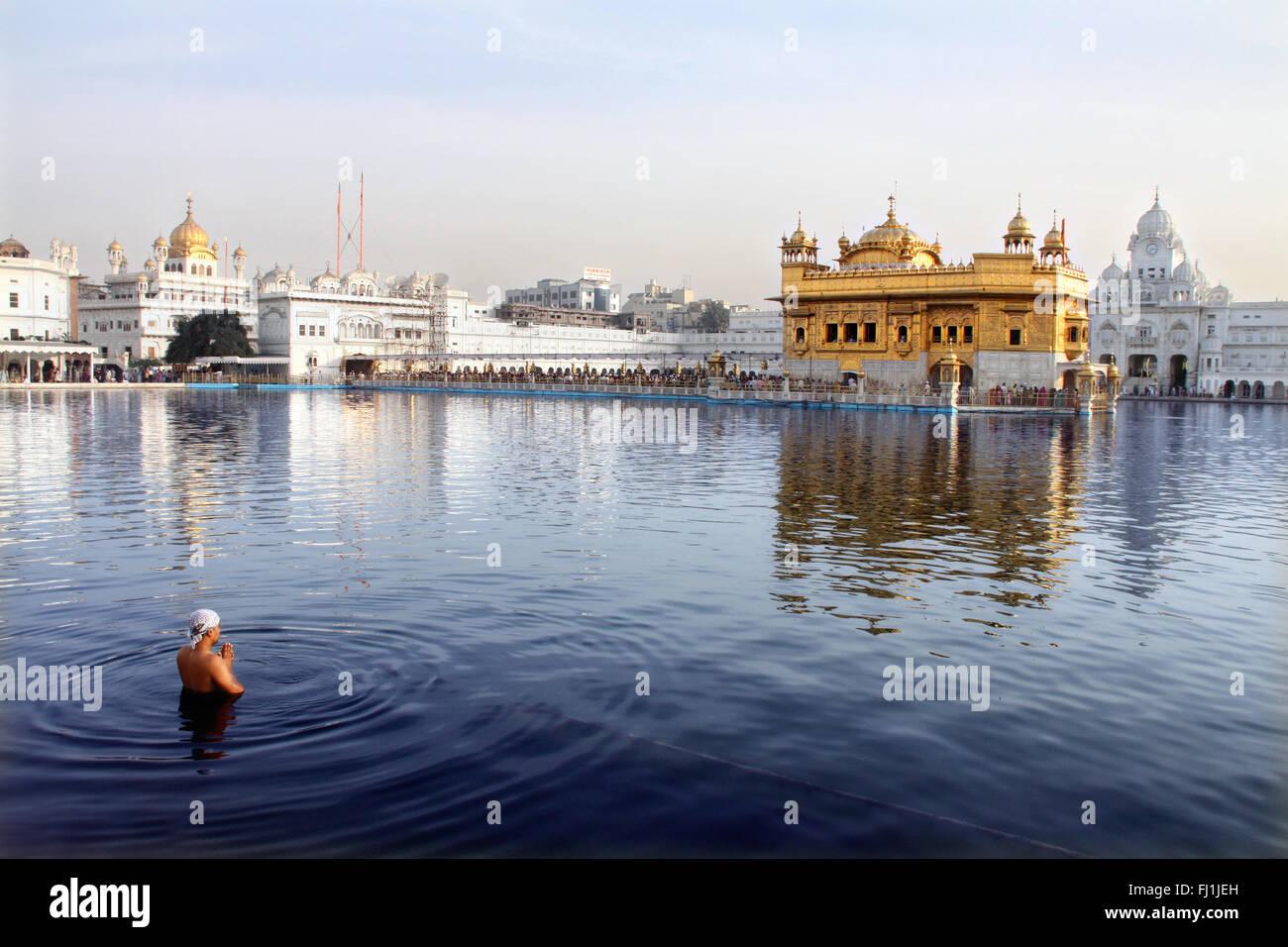 Un uomo sikh prega nel lago intorno al tempio d'oro, Amritsar , India Immagini Stock