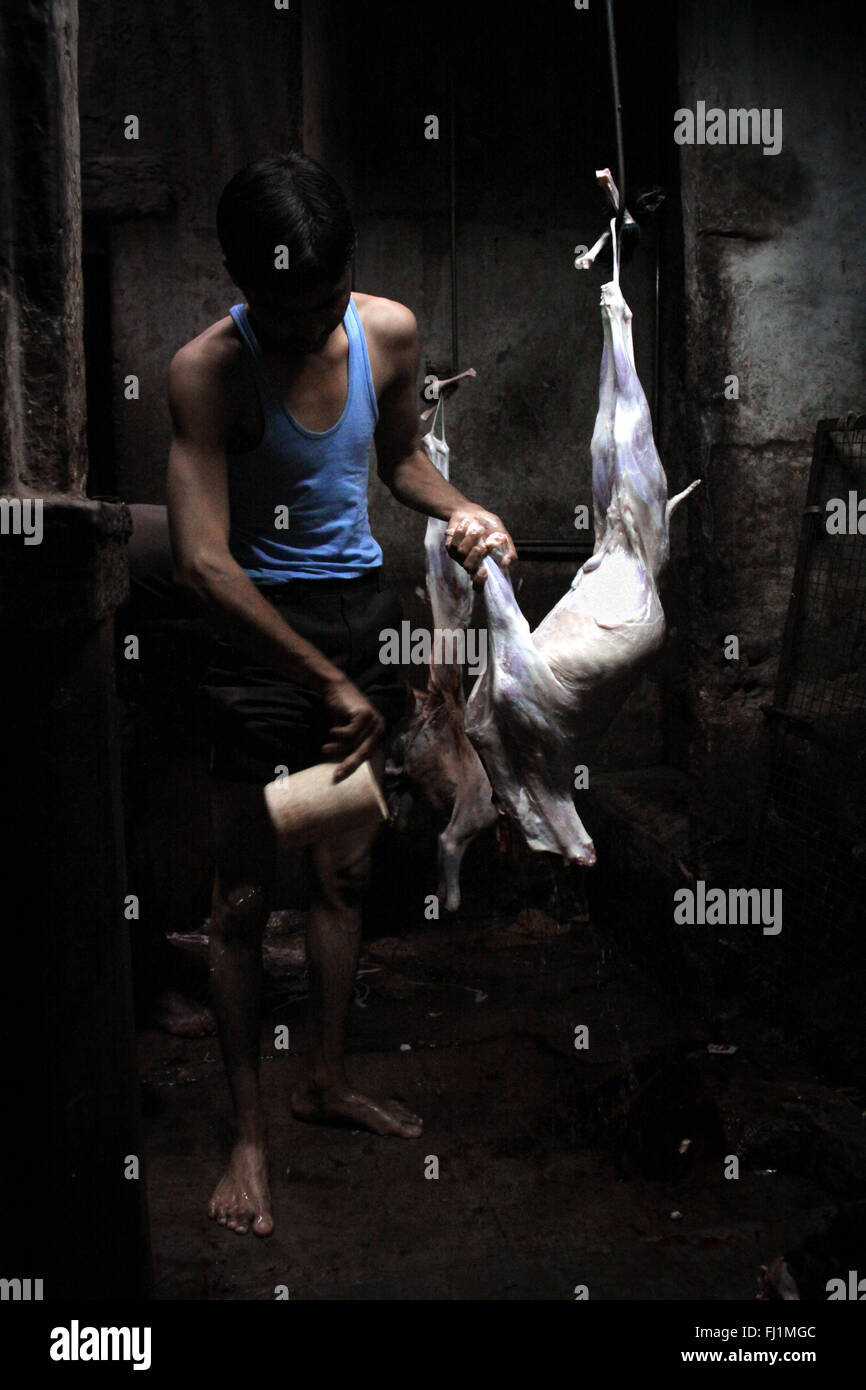 Butcher macello in Jodhpur, India Immagini Stock