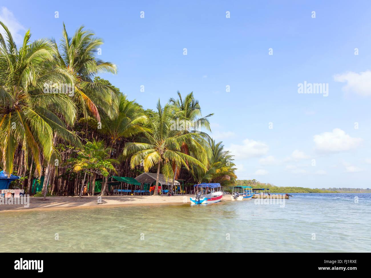 Barche alla Stella Marina Beach, arcipelago Bocas del Toro, Panama Immagini Stock