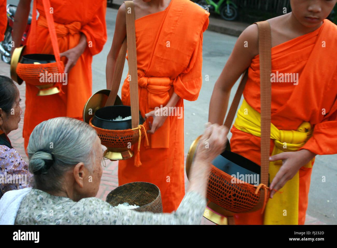 Tak Bat rituale - I monaci buddisti ricevere riso e cibo da pupulation in mattina presto a Luang Prabang, Laos, Immagini Stock