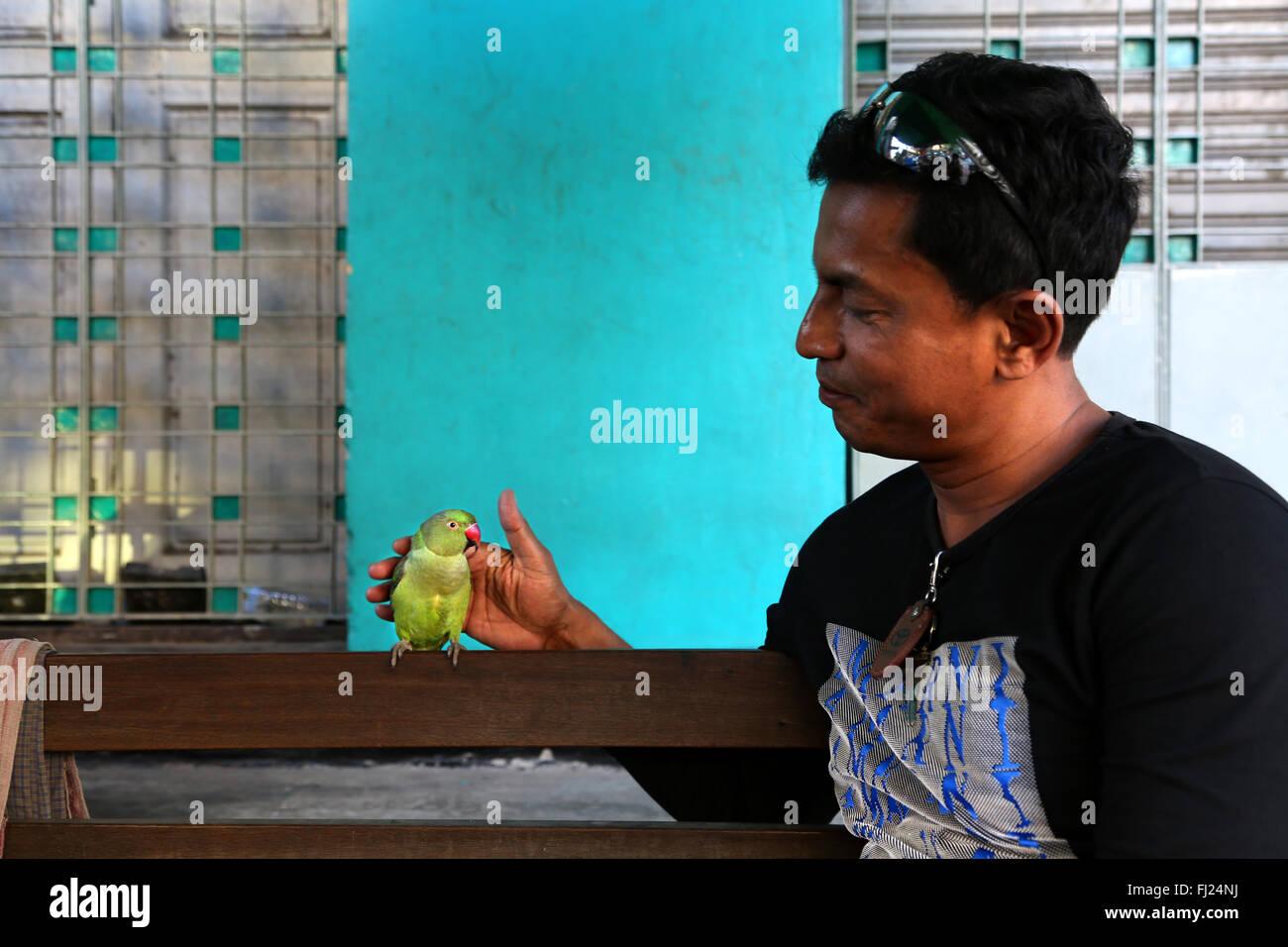 L'uomo uccello di protezione in Myanmar, in Asia Immagini Stock