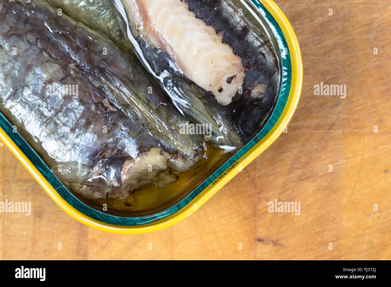 Una macro immagine di conserve, pronto a mangiare, Marocchina di sardine in olio di semi di girasole presentato in cui è aperto lo stagno. Foto Stock