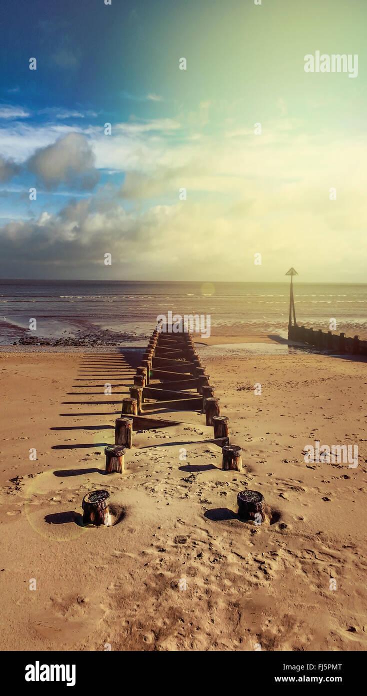 Paesaggio di spiaggia con il legno Immagini Stock