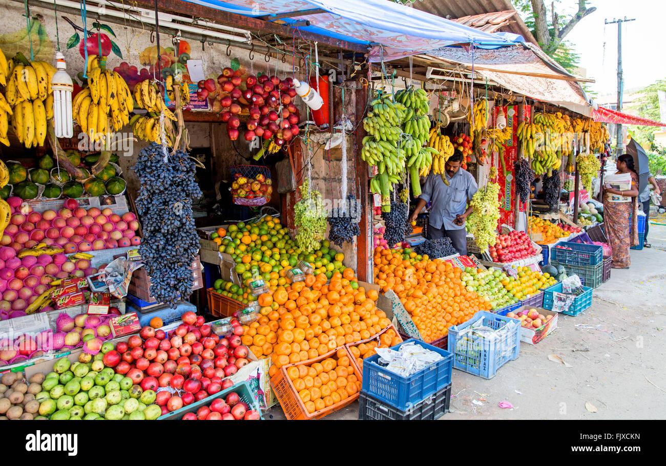 Fruttivendolo Store Alleppey Kerala India Immagini Stock