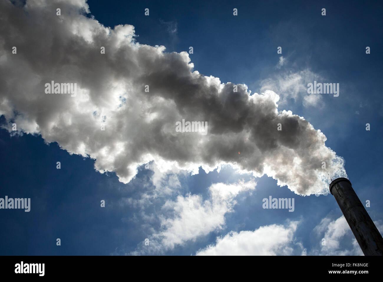 Chaminé soltando vapor de caldeira Foto Stock