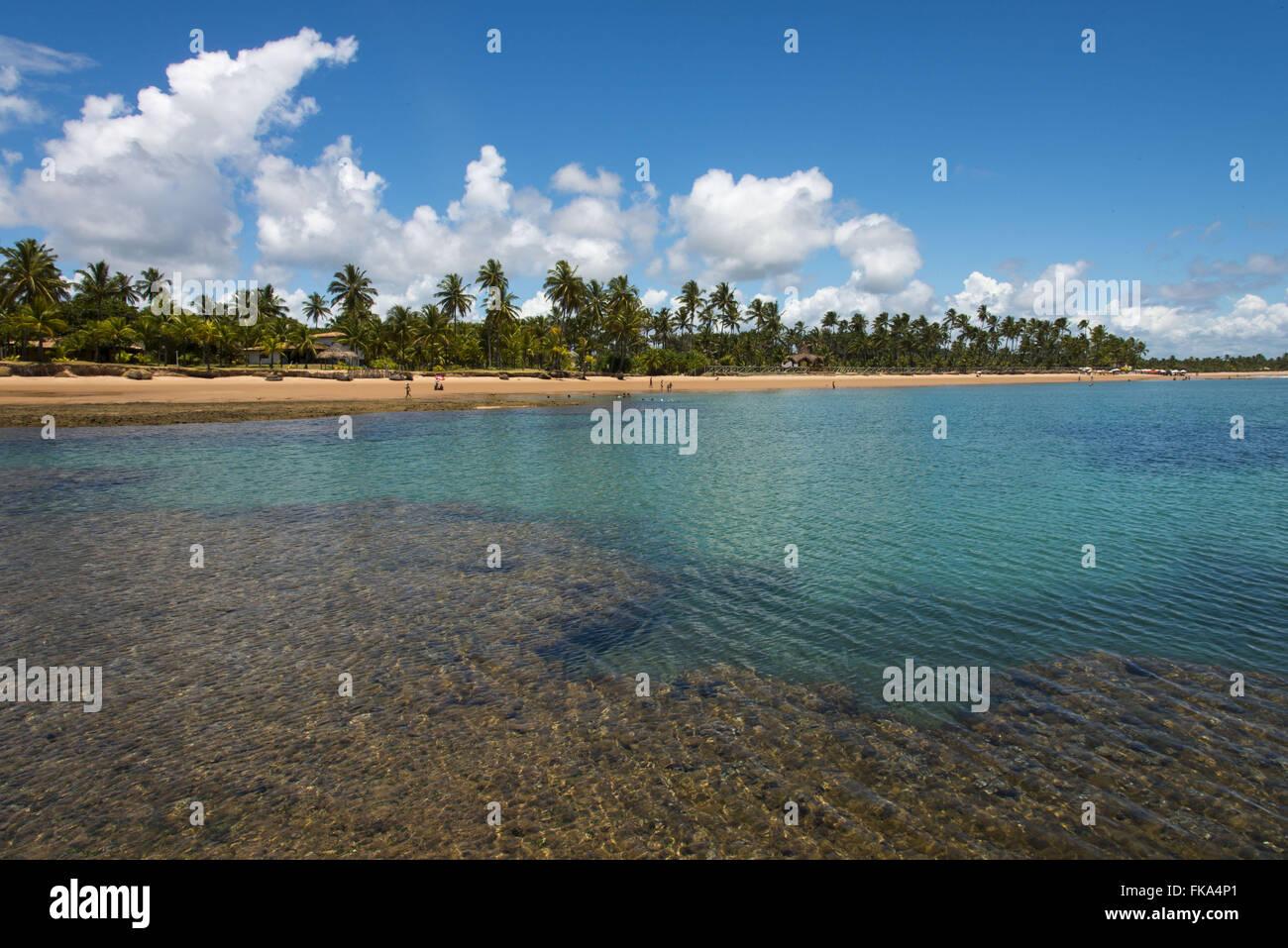 Piscine tra le barriere coralline di spiaggia Taipu fuori Immagini Stock