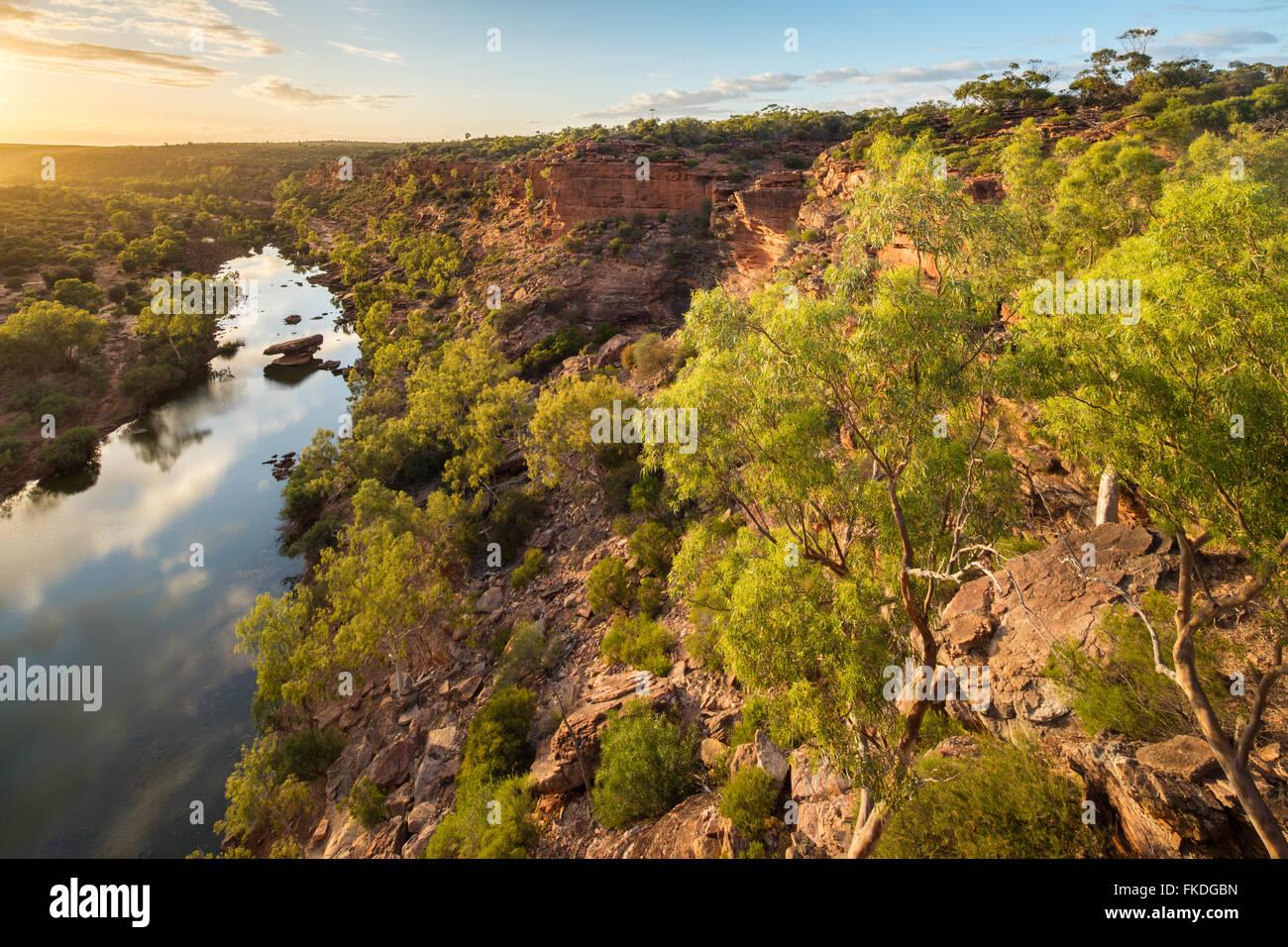Il falco della testa del belvedere sopra il fiume Murchison gorge, Kalbarri National Park, Australia occidentale Immagini Stock