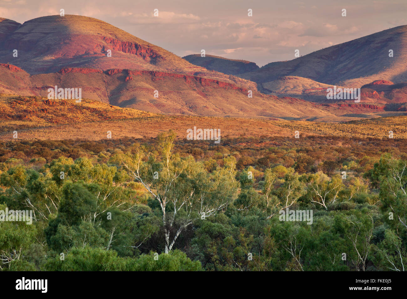 Pilbara, Australia occidentale Immagini Stock
