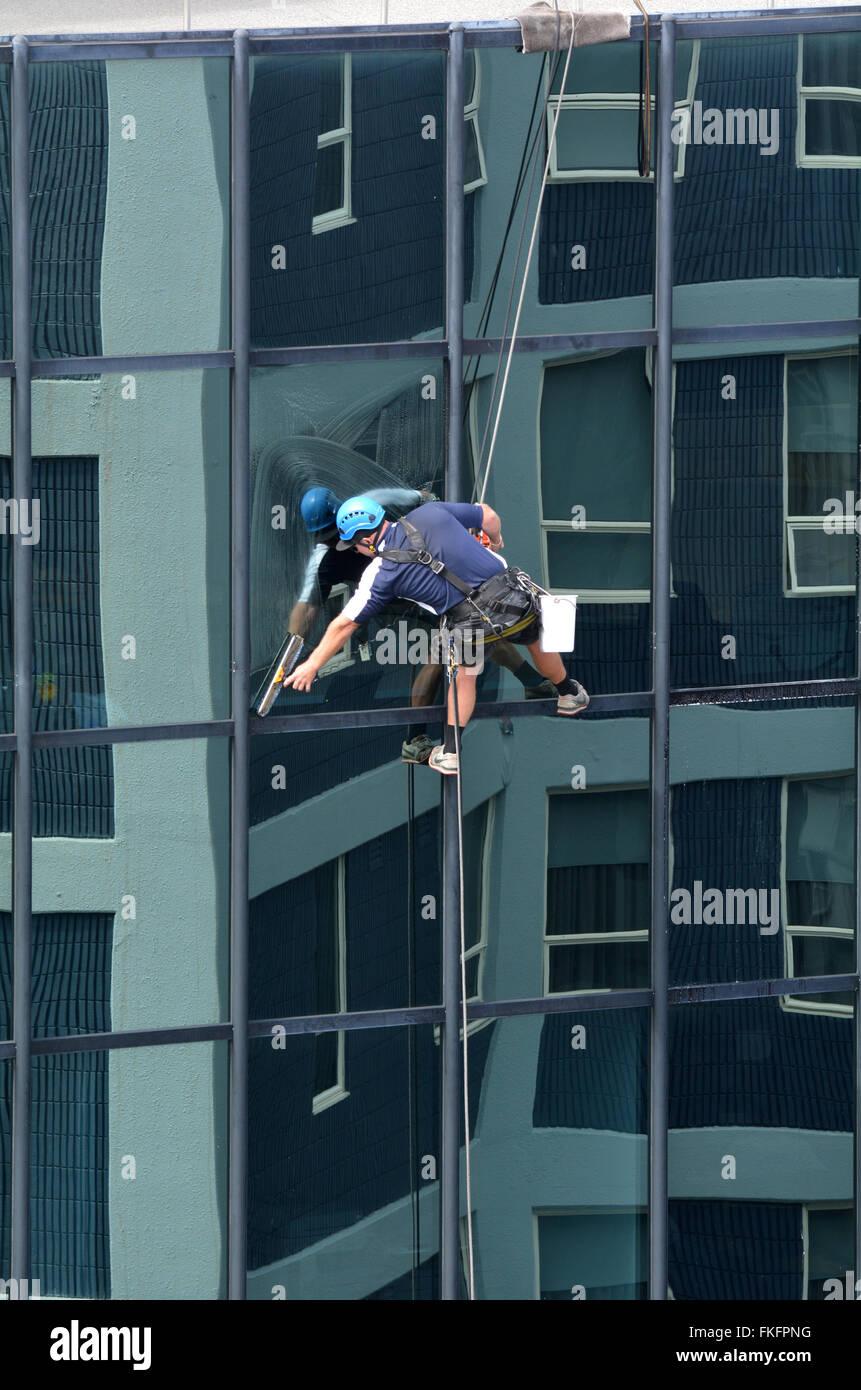 AUCKLAND - MAR 02 2016:Window Cleaner funziona su un alto edificio.Pulizia finestrino è considerato uno dei Immagini Stock