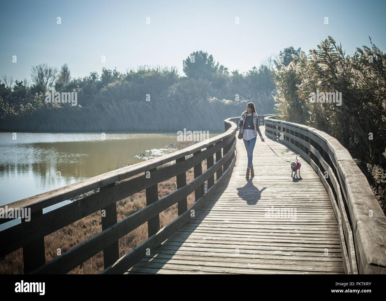 Lunghezza piena vista anteriore giovane donna legno passerella sopraelevata cane a piedi Immagini Stock