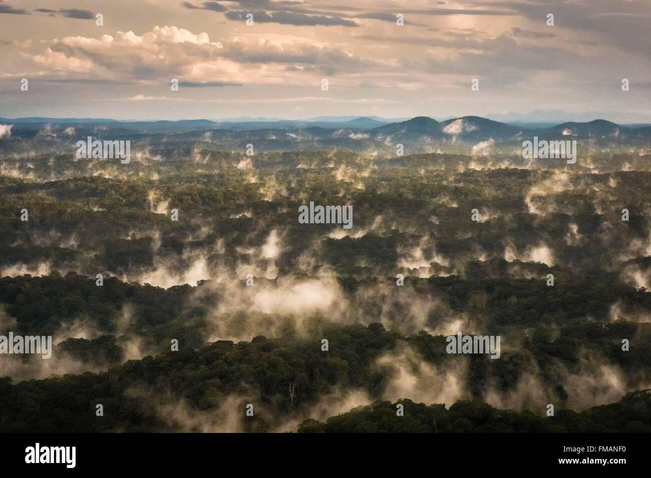 Francia, Guyana Guyana Francese Parco amazzonico, area del cuore, le nebbie serali nella foresta amazzonica Foto Stock