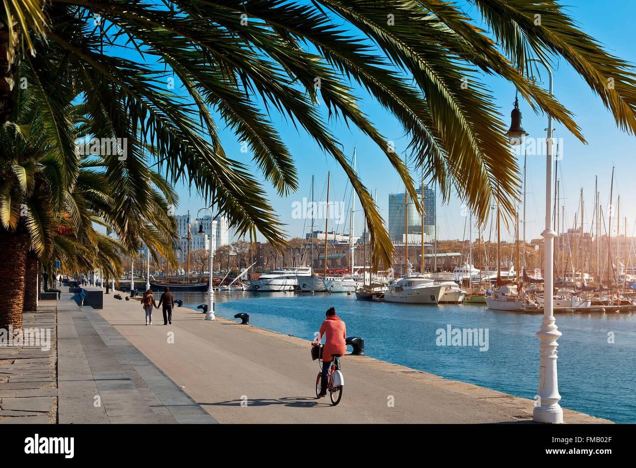 In Spagna, in Catalogna, Barcellona, Mariscal è la gamba, Port Vell Foto Stock