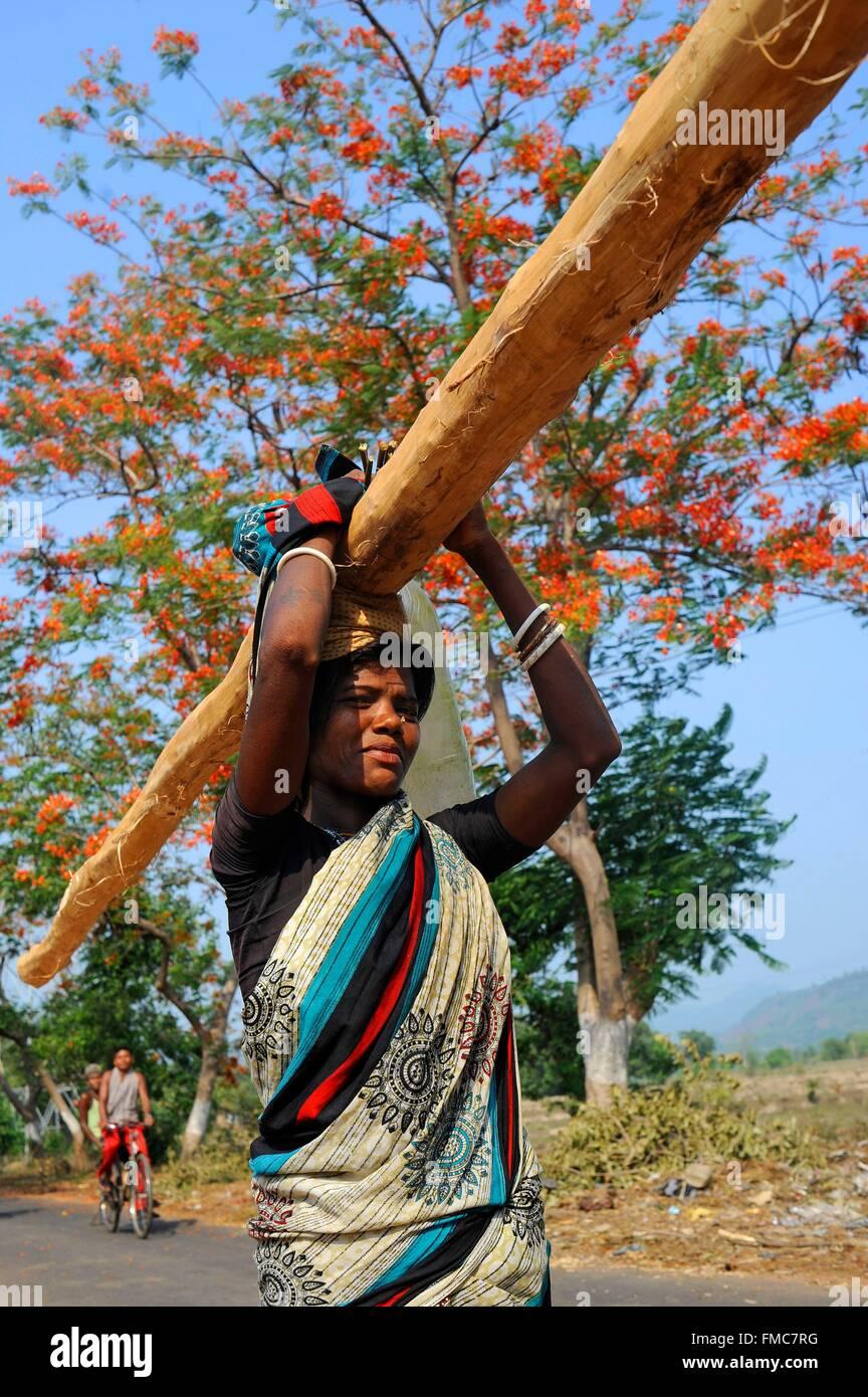 India, Odisha, una donna indiana di legno carichi su una strada di campagna Immagini Stock
