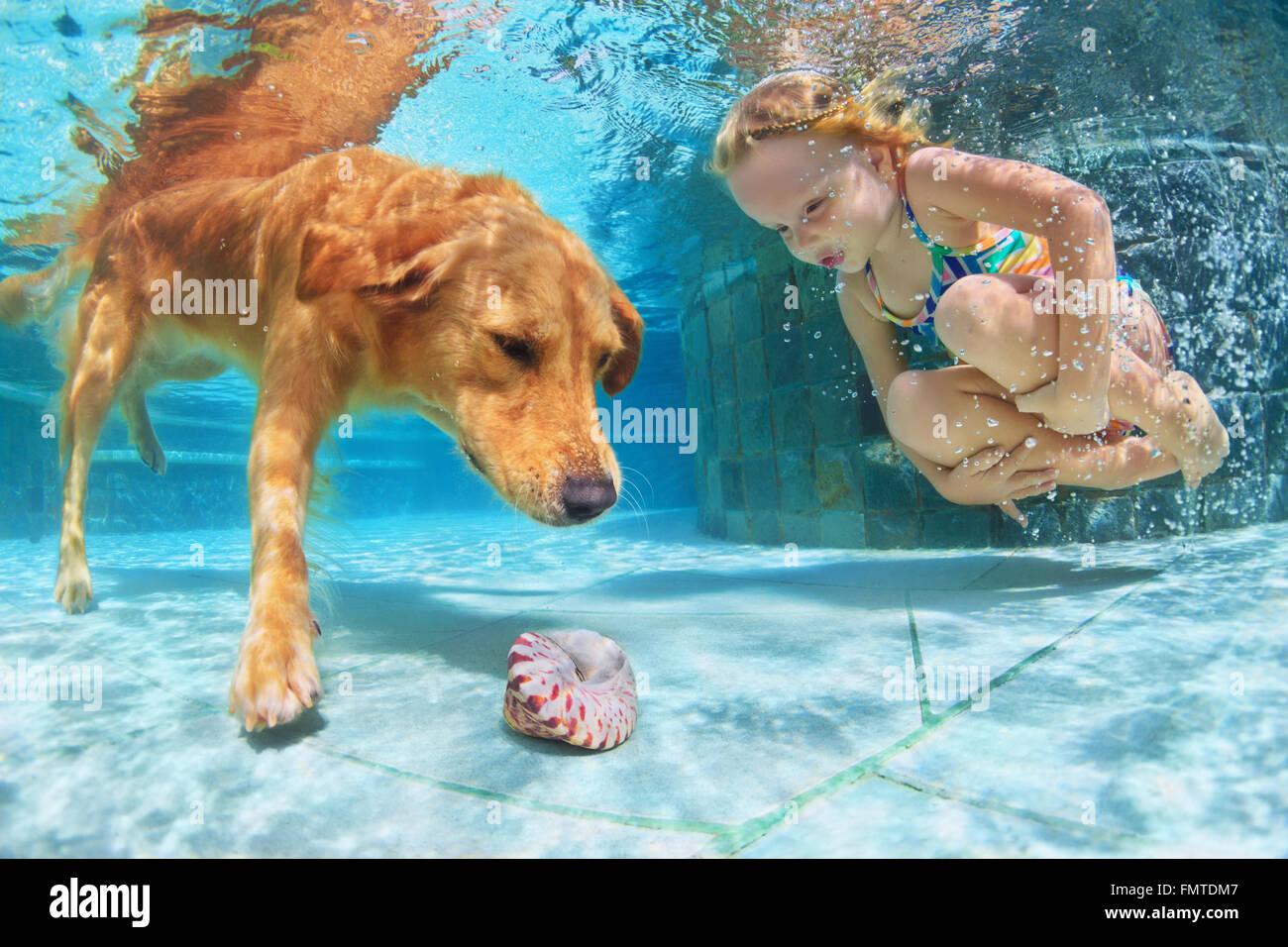 Il bambino gioca con il divertimento e il treno Golden Labrador retriever puppy in piscina - salto e tuffarsi underwater Immagini Stock