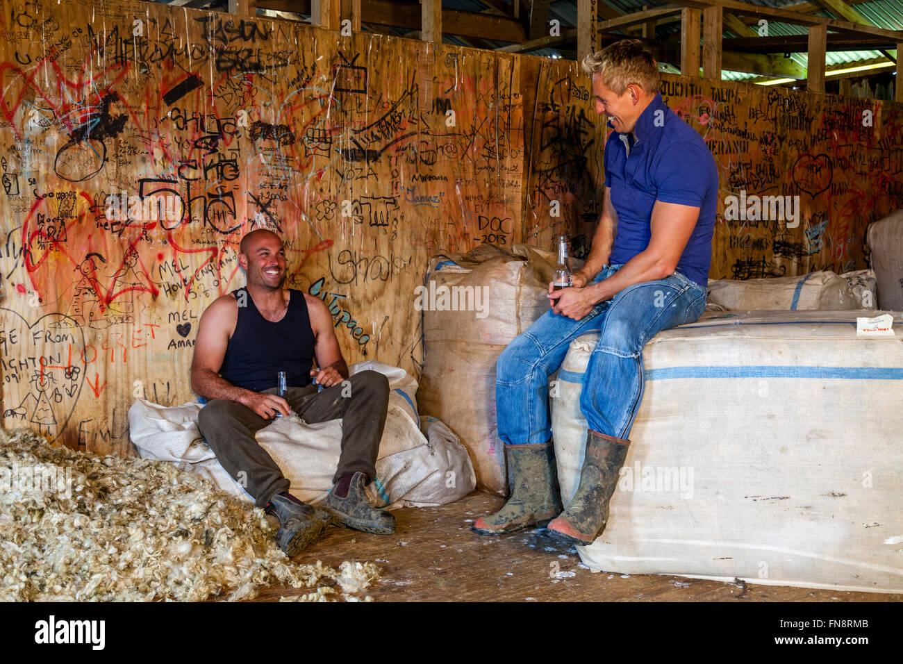 Due gli allevatori di pecore rilassarsi nella lana sparso dopo una mattinata trascorso la tosatura delle pecore, Foto Stock