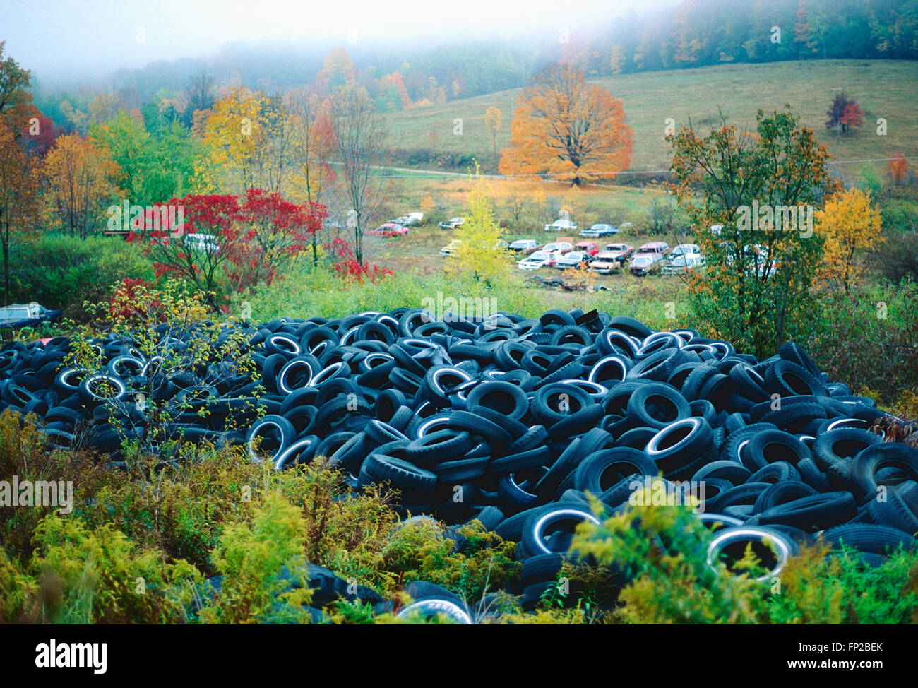 Vecchio usato pneumatici per automobile in discarica Immagini Stock