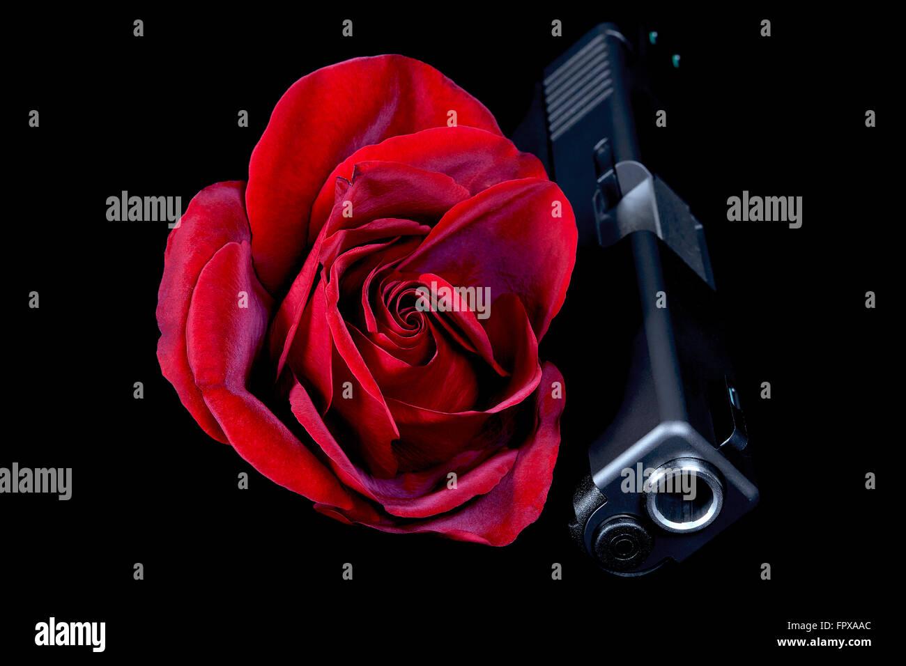 Rosa Rossa Con La Pistola In Primo Piano Su Sfondo Nero Foto