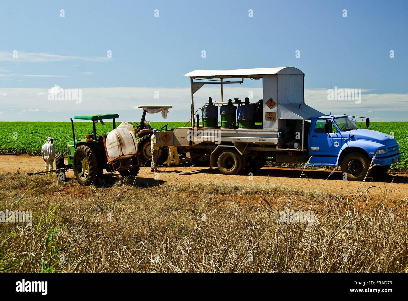 Macchine agricole per il raccolto di semi di soia in campagna Immagini Stock
