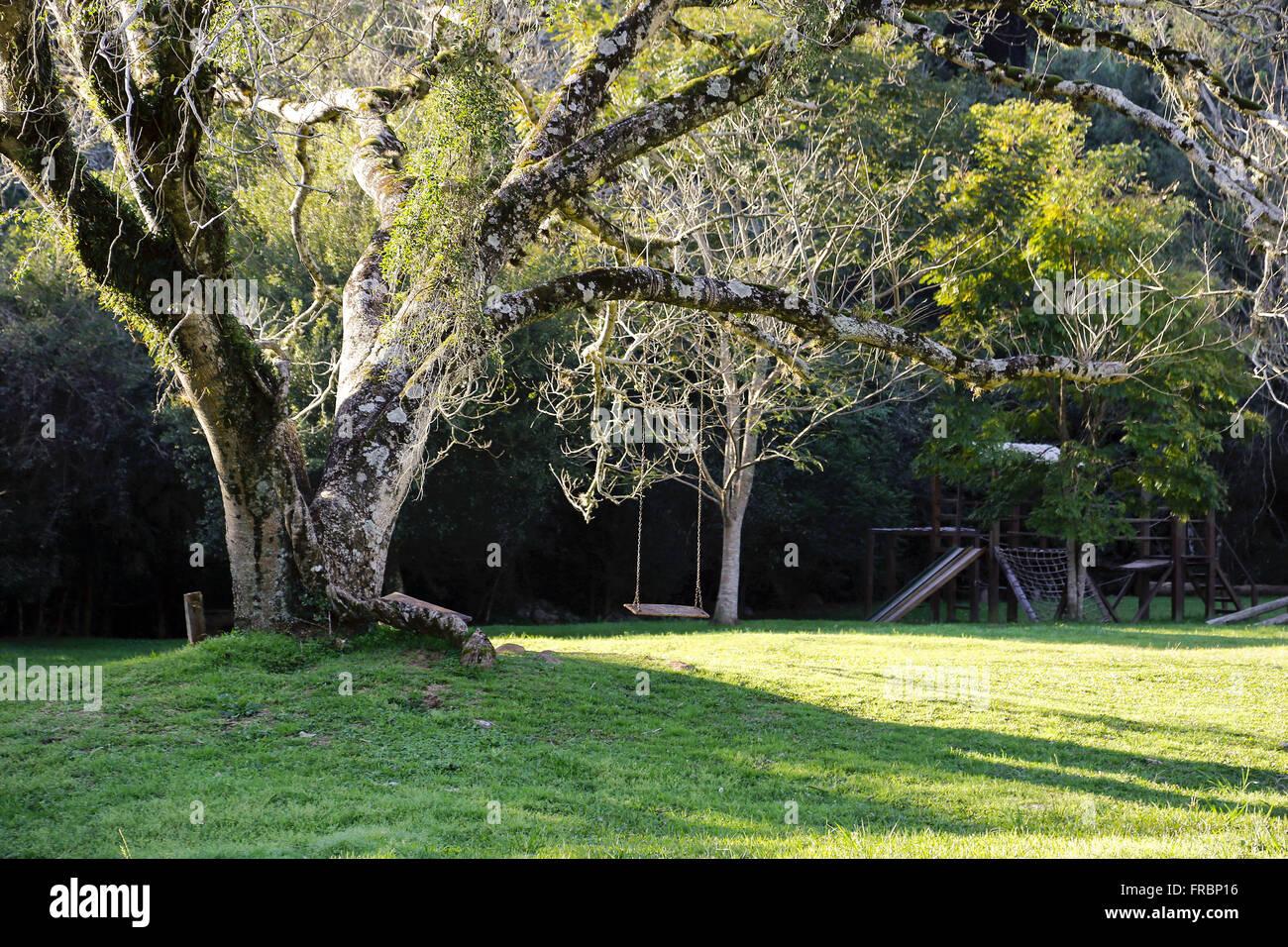 Stato patrimoniale fatta di catene da rami di alberi Immagini Stock