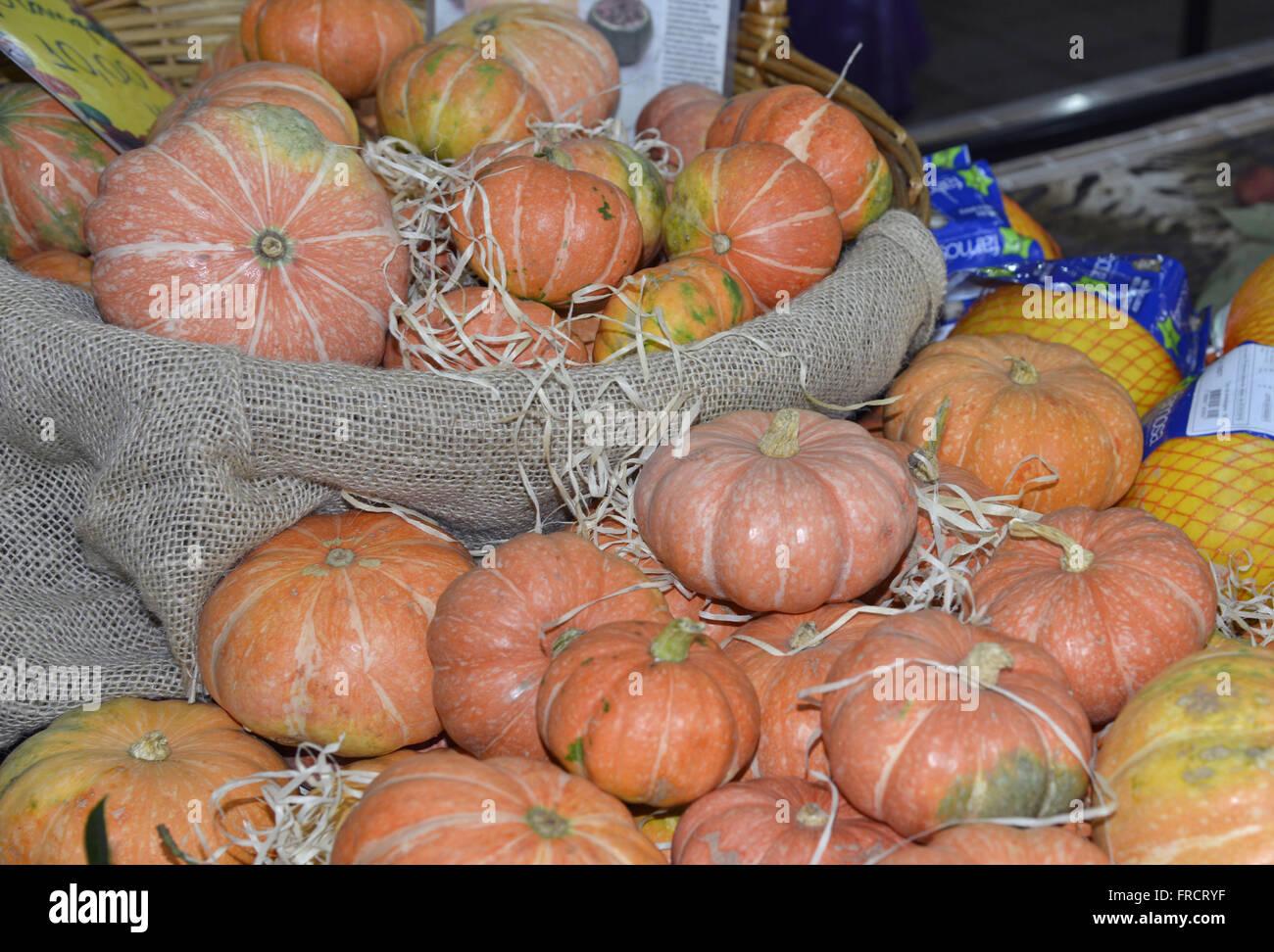 La zucca-squash e meloni per la vendita nel mercato della città Immagini Stock