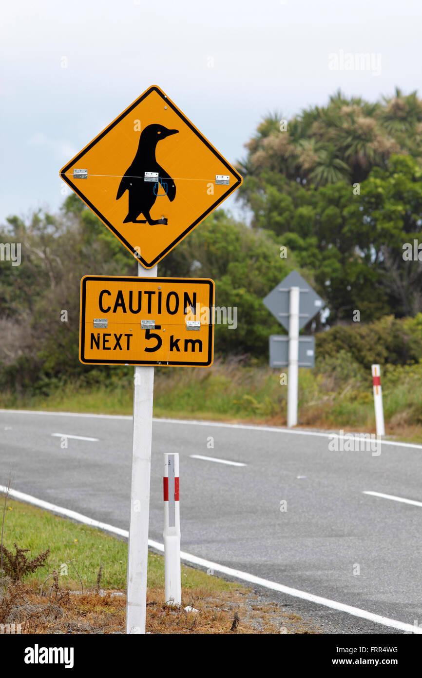 Segno attenzione pinguins vicino a Punakaiki, regione West Coast, Isola del Sud, Nuova Zelanda Immagini Stock