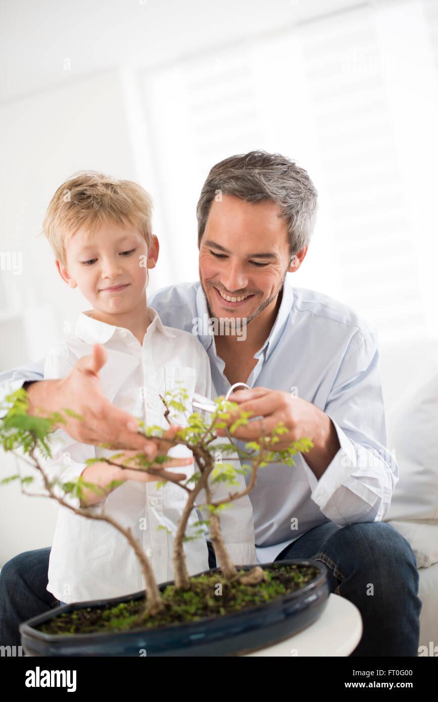 Padre Insegnare A Suo Figlio Di Prendersi Cura Di Un Bonsai Foto