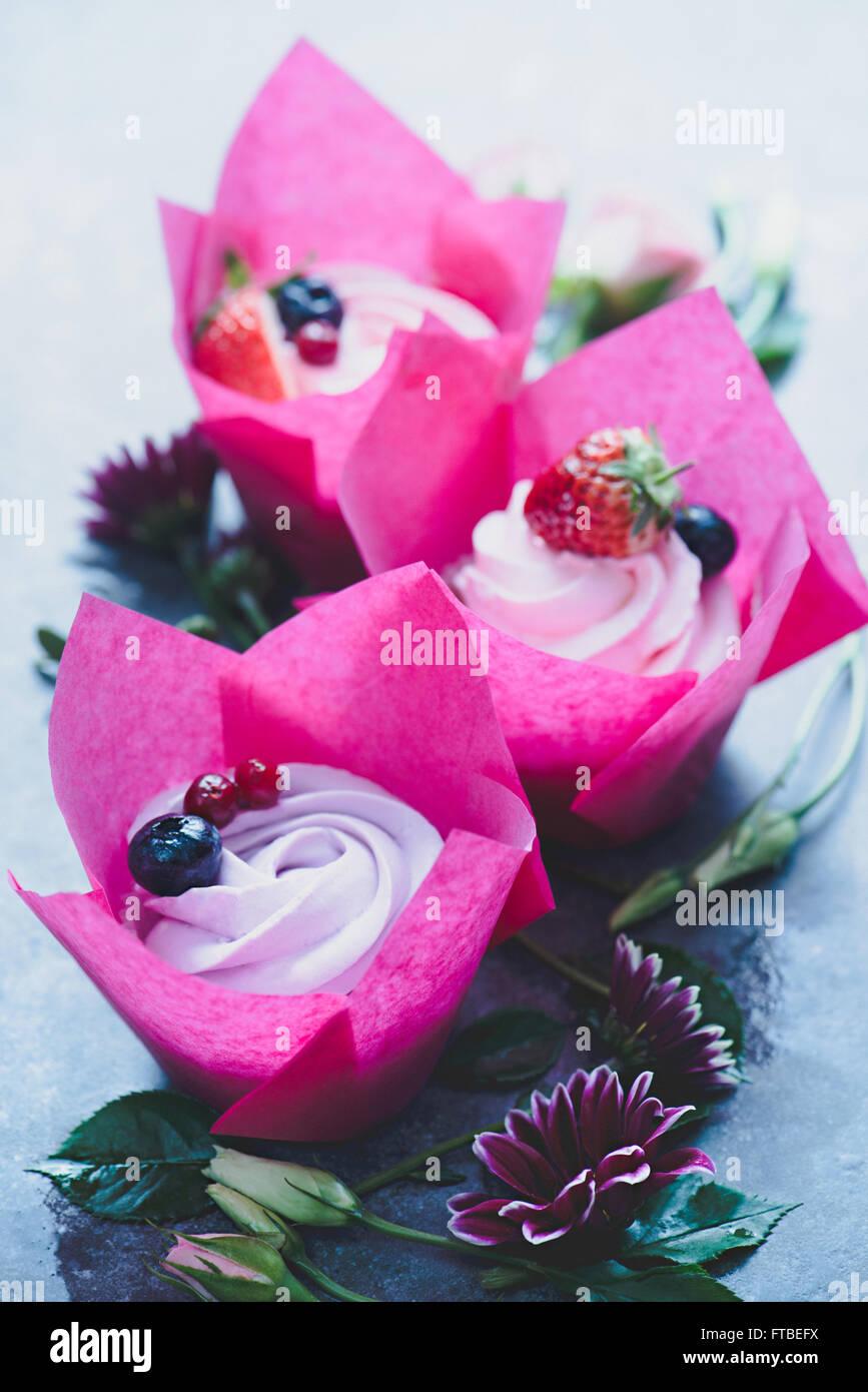 Cupcakes di primavera Immagini Stock