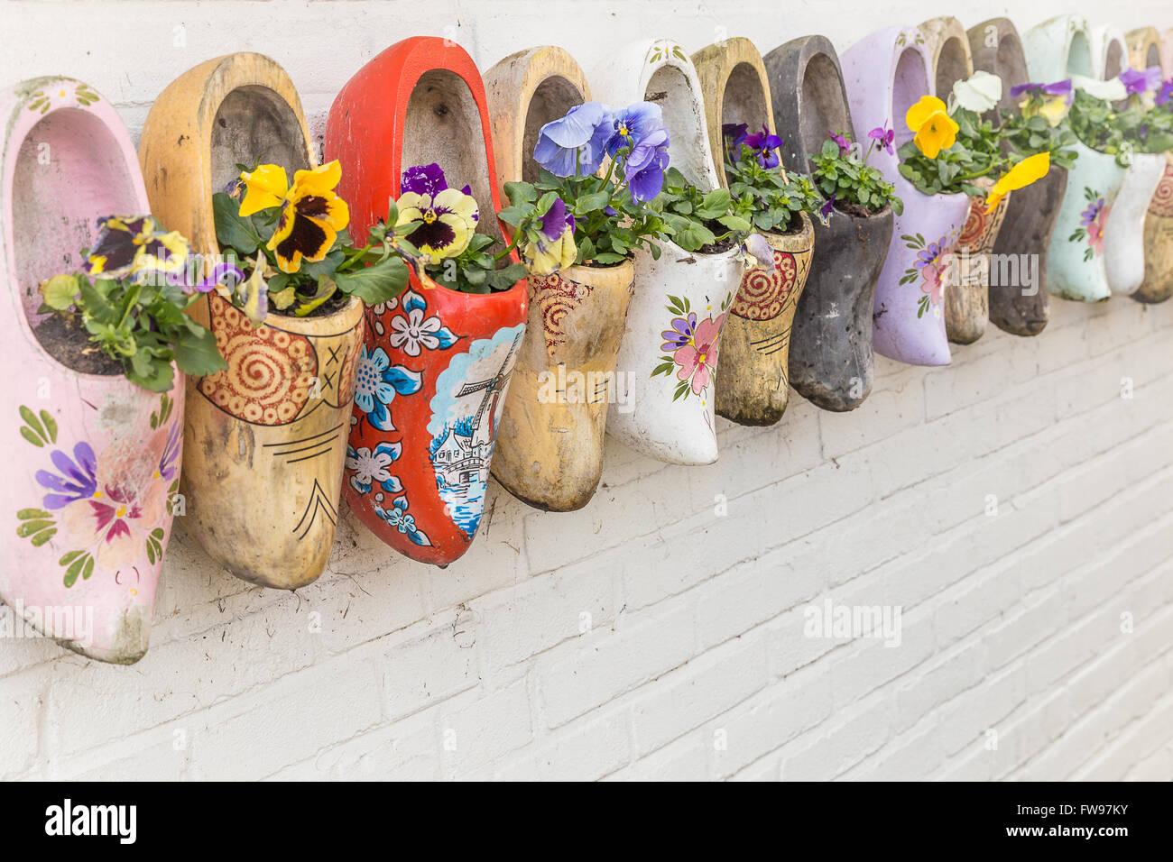 Gli zoccoli e fiori in Olanda Immagini Stock