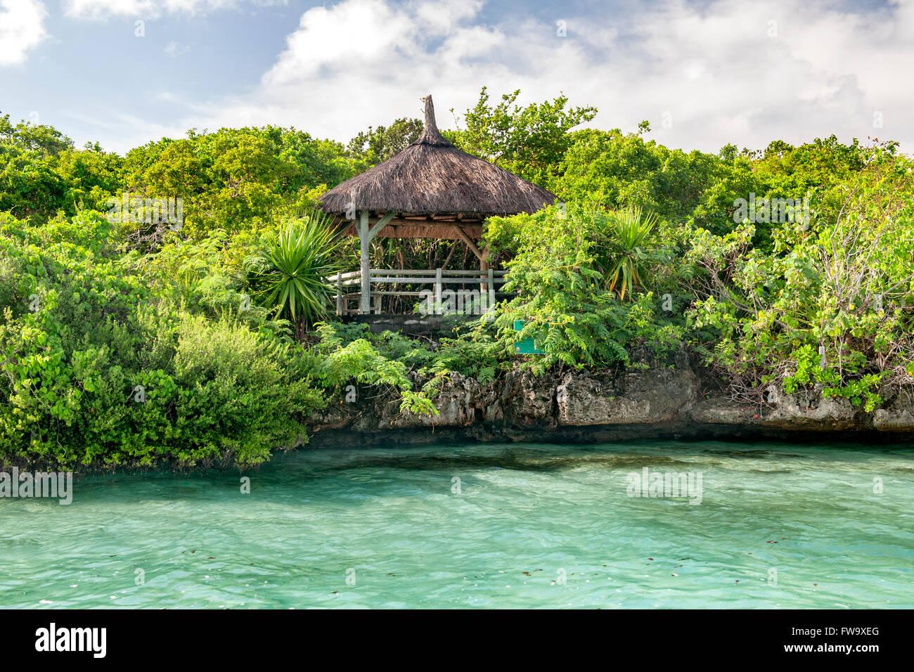La linea di costa e verdeggiante vegetazione dell'isolotto di Ile aux egrette off costa sud est di Mauritius. Foto Stock