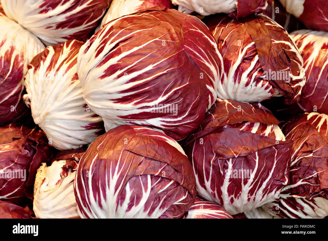 Cavoli rossi, Kraut rosso o blu Kraut (Brassica oleracea convar. var. capitata rubra) Immagini Stock