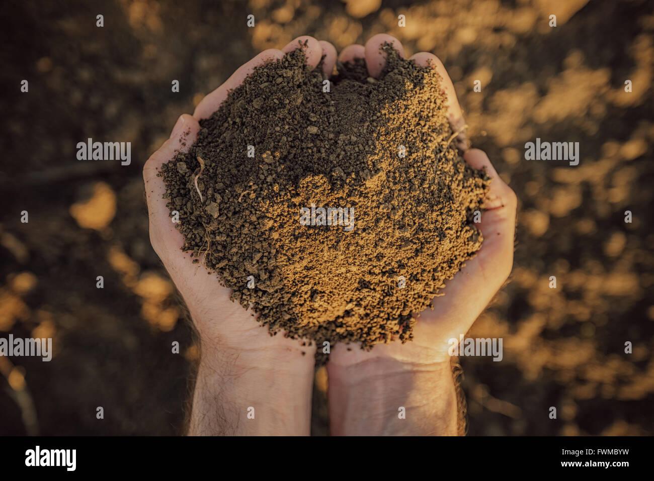 L'agricoltore maschio pila di contenimento del terreno e di esaminarne la qualità sulle fertili terre agricole, Immagini Stock