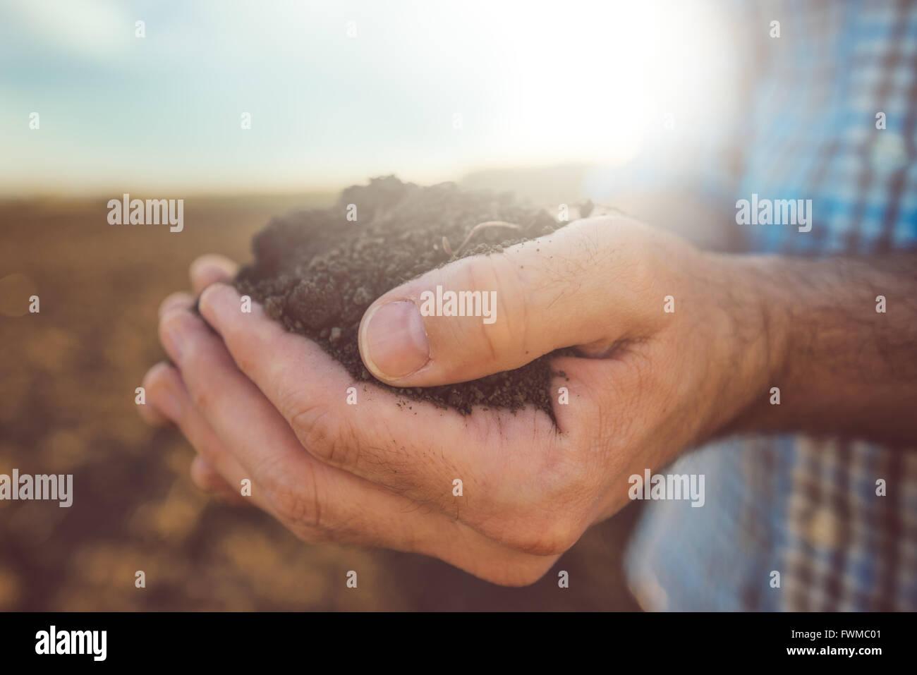 L'agricoltore che detiene pila di terreno arabile, maschio agronomo esame di qualità delle fertili terre Immagini Stock